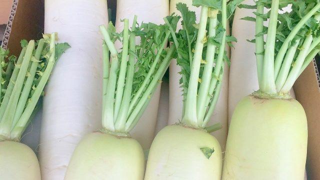 沸騰ワード10志麻さんの大根とホタテのレムラードの作り方レシピ!(7月24日)